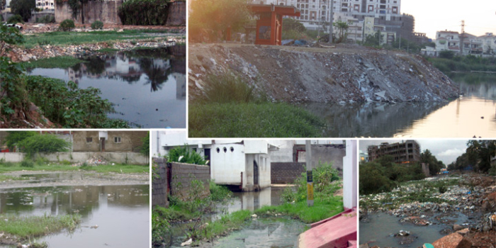 NGT Orders A Halt To The Destruction Of Narsingi Lake
